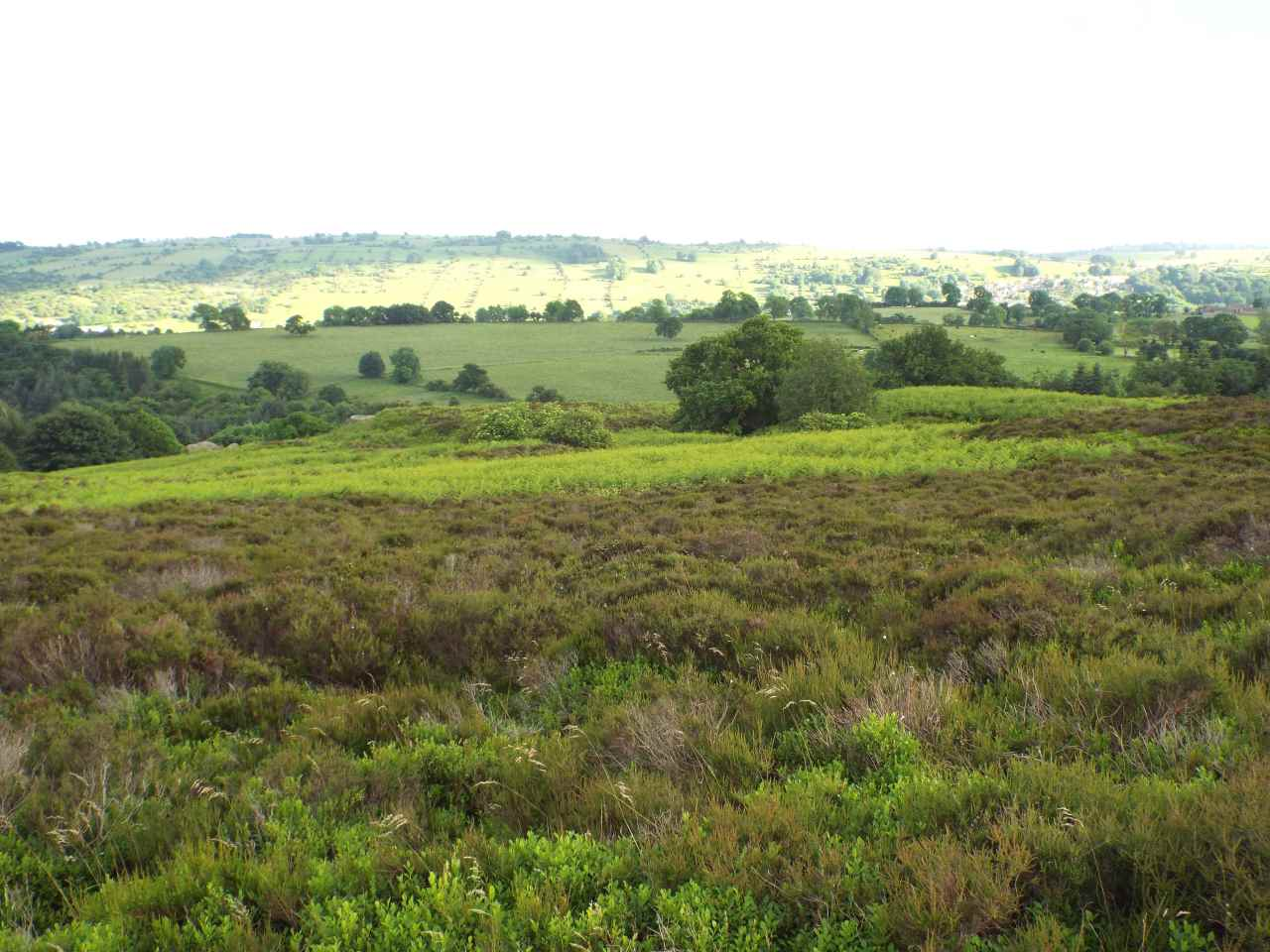 Walking on Stanton Moor